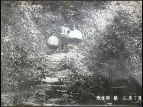 鳴鳳古道:鳴鳳古道 (1).jpg
