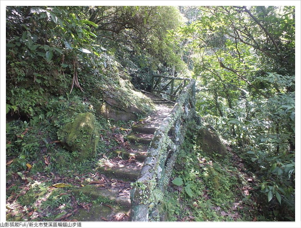 蝙蝠山步道 (8).JPG - 蝙蝠山步道