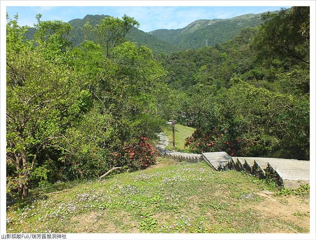 猴洞神社 (42).JPG - 猴洞神社鐘萼木