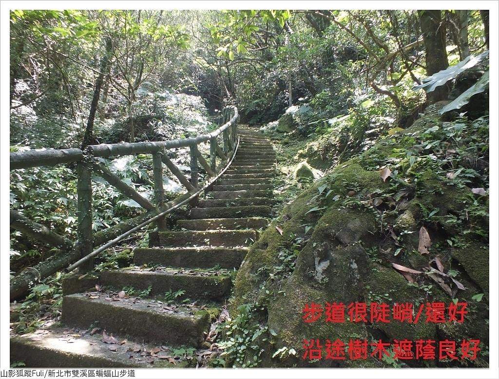 蝙蝠山步道 (9).JPG - 蝙蝠山步道