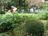 河岸森林Garden:20.JPG