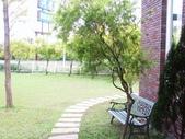 河岸森林Garden:7.JPG