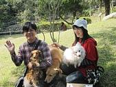 我的精選輯2:最上相的狗狗圖