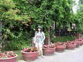 河岸森林Garden:8.JPG