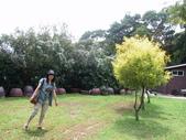 河岸森林Garden:10.JPG