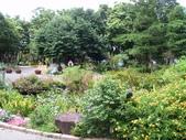 河岸森林Garden:12.JPG