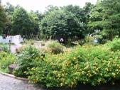 河岸森林Garden:13.JPG