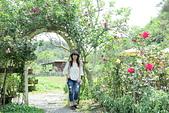大溪玫瑰山谷:2.JPG