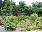 河岸森林Garden:15.JPG