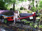 清境農場遊:台一農場