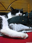 My Pets Vol. 3:2010512-06.JPG