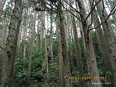 20090214-加里山:加里山01.jpg