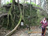 20090214-加里山:加里山05.jpg