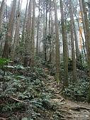 20090214-加里山:加里山08.jpg