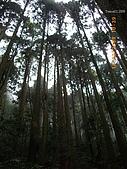 20090214-加里山:加里山09.jpg