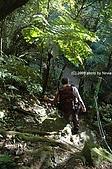 20081129-白石山:15.JPG