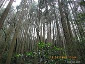 20090214-加里山:加里山14.jpg