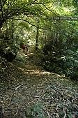 20081129-白石山:21.JPG