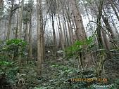 20090214-加里山:加里山15.jpg