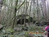 20090214-加里山:加里山16.jpg