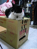 My Pets Vol. 3:2010515-07.JPG