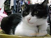 My Pets Vol. 3:2010515-08.JPG