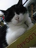 My Pets Vol. 3:2010515-09.JPG