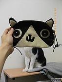 2010/01/21 貓口罩(眼罩):IMGP6195.JPG
