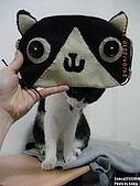 2010/01/21 貓口罩(眼罩):IMGP6196.JPG