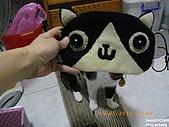 2010/01/21 貓口罩(眼罩):IMGP6198.JPG