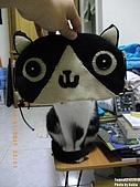 2010/01/21 貓口罩(眼罩):IMGP6201.JPG