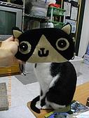 2010/01/21 貓口罩(眼罩):IMGP6202.JPG