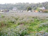 20090222-三坑鐵馬道:花海