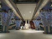 遠走高飛:仁川國際機場站冰樹.JPG