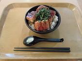 遠走高飛:鰻魚丼飯.JPG