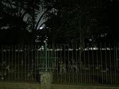 遠走高飛:獨立廣場鹿園.JPG