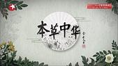 蒙古元朝:本草中華.JPG