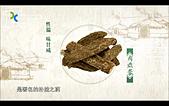 蒙古元朝:沙漠人參.JPG