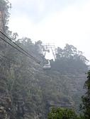 遠走高飛:叢林纜車.JPG