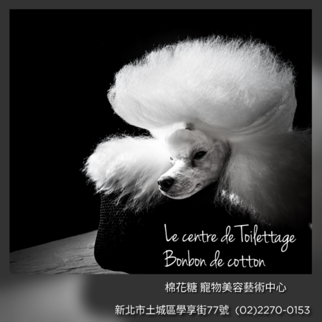 quickgrid_201812022114125.png - 棉花糖寵物美容藝術中心介紹