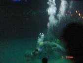 06.04-06.06 海洋公園:1183882867.jpg