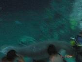 06.04-06.06 海洋公園:1183882868.jpg
