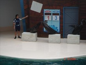 06.04-06.06 海洋公園:1183882883.jpg