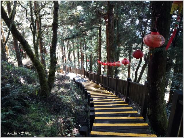 24.jpg - 【宜蘭。大同】太平山中央階梯