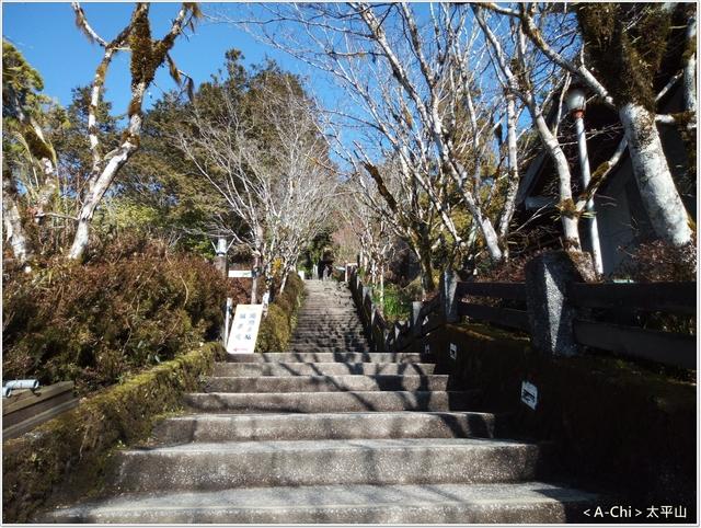 8.jpg - 【宜蘭。大同】太平山中央階梯