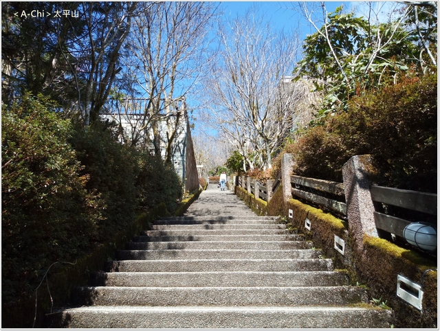 27.jpg - 【宜蘭。大同】太平山中央階梯