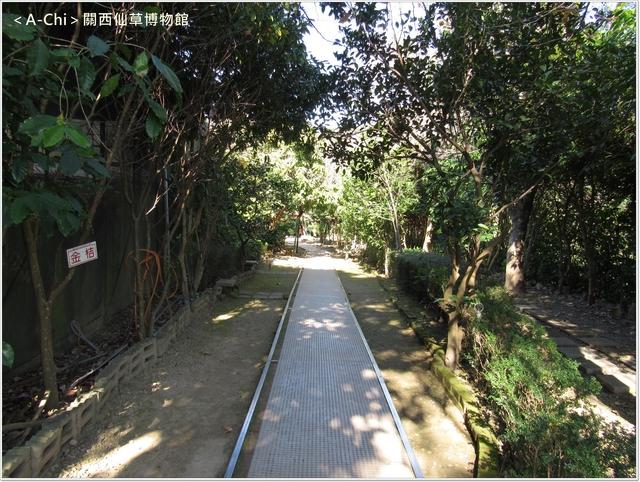 仙3.JPG - 【新竹。關西】仙草博物館