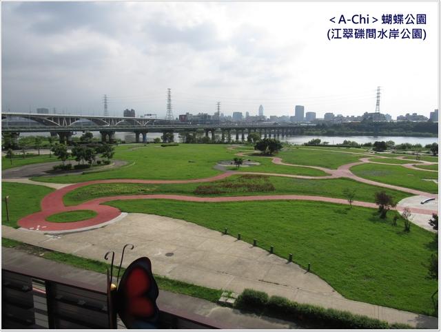 蝴蝶公園 - 【新北市】板橋 蝴蝶公園(江翠礫間水岸公園)