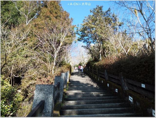 5.jpg - 【宜蘭。大同】太平山中央階梯
