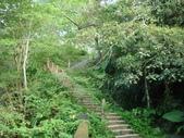 【竹縣】關西 四寮溪戶外生態教室(步道):從橋旁而下